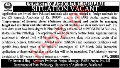 UAF Faisalabad Jobs 2018 for Research Associate
