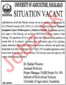 University of Agriculture Faisalabad PARB Jobs 2018