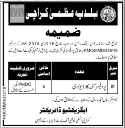Karachi Institute of Heart Diseases Professors Jobs