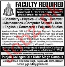 Punjab College PC Qila Didar Singh Campus Jobs