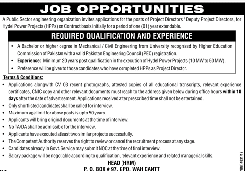 Public Sector Organization Project Director Jobs