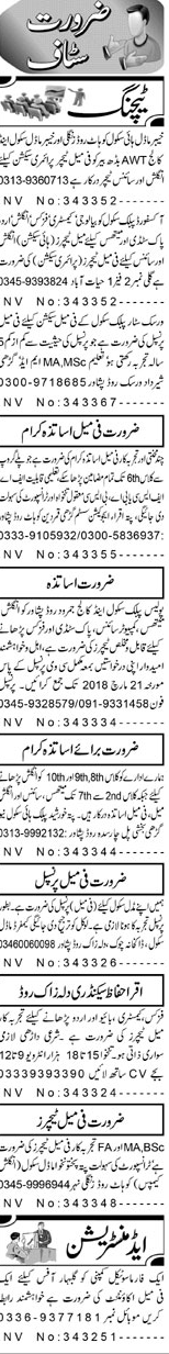 Male / Female Teachers, Coordinators   Job Opportunity