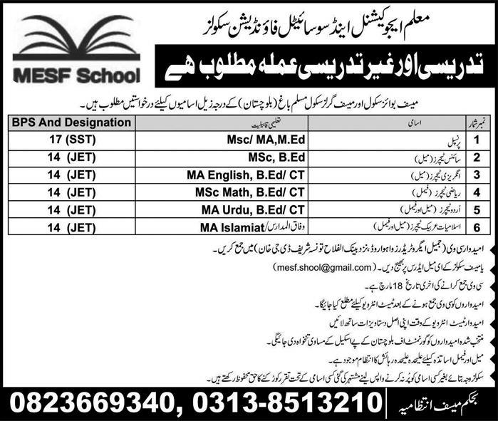 MESF Schools  Teachers Jobs