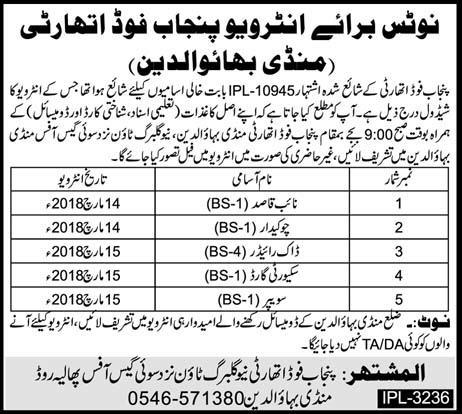 Punjab Food Authority  Naib Qasid, Chawkidars Jobs