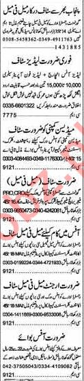 Daily Dunya Newspaper Classified Jobs 2018