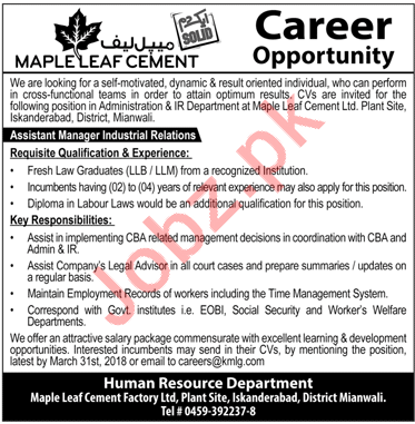 Maple Leaf Cement MLC Job Opportunities