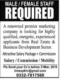 Male / Female Marketing Staff Job in Real Estate