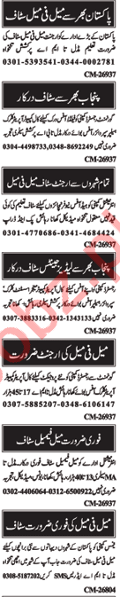 Male & Female Staff Jobs Opportunity in Islamabad