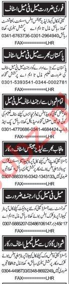 Call Operators, Helpers, Office Boy, Clerk, Assistants Jobs