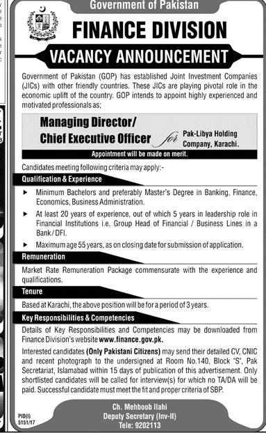 Finance Division Managing Director / Chief Executive Job