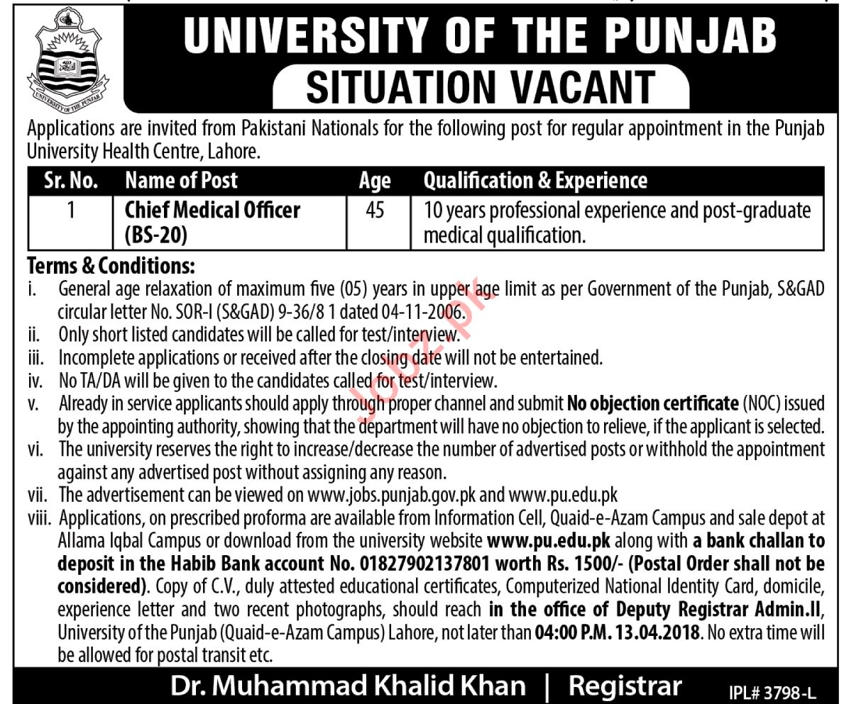 University of Punjab PU Lahore Jobs Chief Medical Officer