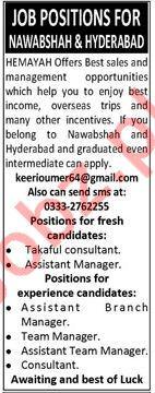 Sales & Management Jobs 2018 In Hyderabad Sindh