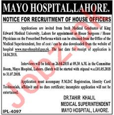 Mayo Hospital MH Job Opportunities