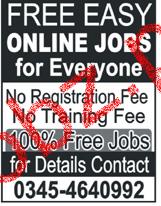 Online Data Entry Job Open
