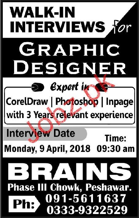 Graphic Designers  Job in Brains College