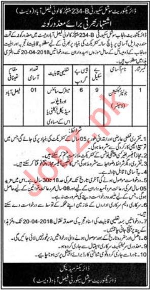 Directorate Punjab Social Security Faisalabad Jobs 2018