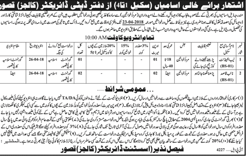 Deputy Director of Education College Class Four Staff Jobs