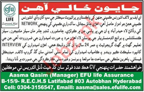 Efu Life Assurance Ltd Consultants Jobs 2018 in Hyderabad