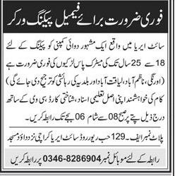 Female Packing Workers Job in Site Area Karachi