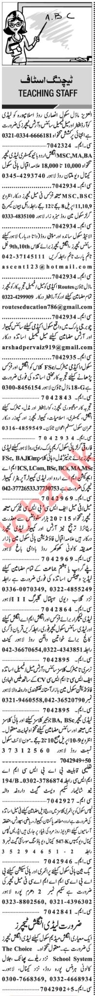 Principal & Teachers Jobs in Lahore