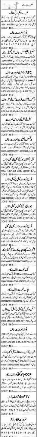 Chief Security Officers, Supervisors, Clerks Wanted