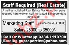 Giga Properties Real Estate Marketing Staff