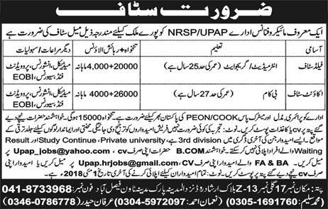 Field Staff and Account Staff Job in Micro Finance NRSP /PAP