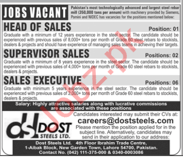 Dost Steels Limited - Sales Jobs