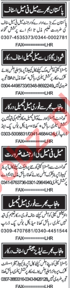 Computer Operator Jobs in Private Company at Karachi