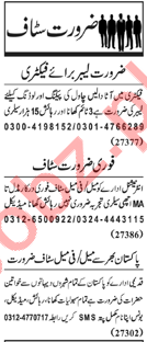 Packing & Loading jobs in Private Factory at Lahore