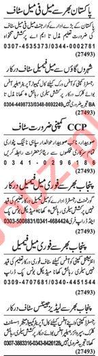 Daily Nawaiwaqt Newspaper Jobs 2018