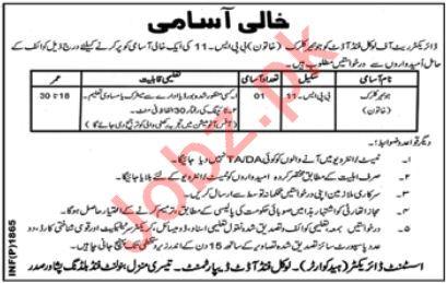 Directorate of Local Fund Audit Peshawar Jobs 2018 Clerk