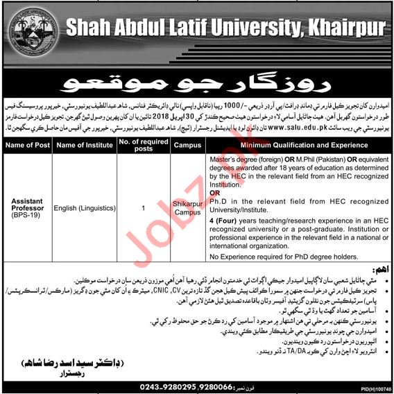 Shah Abdul Latif University SALU Khairpur Jobs for Professor