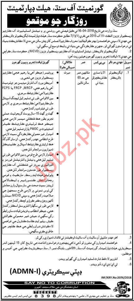 Government of Sindh Health Department Job Executive Director