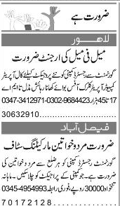 Male / Female Marketing Staff Job Opportunity