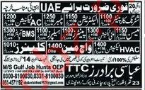 Jobs at Abbasi Brothers