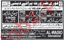 Jobs at Al Wasio International