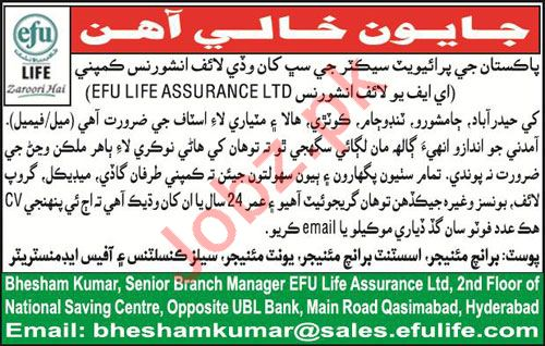 Efu Life Assurance Ltd Jobs 2018 For Consultants & Managers