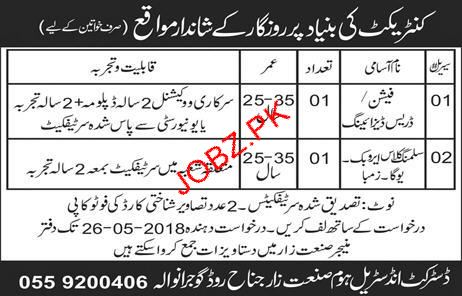 Fashion Dress Designers Job In District Industrial Home 2020 Job Advertisement Pakistan