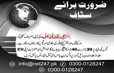 Marketing and Sales Staff Job in Internet Company