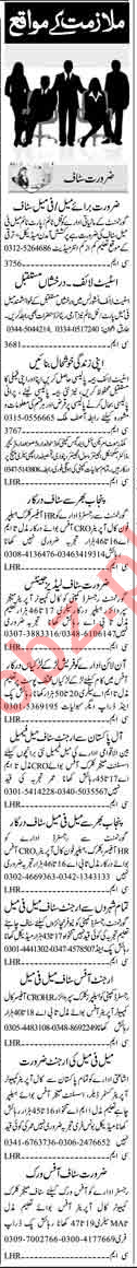 HR Officer, Clerk, Helper, Supervisor, Call Operator Jobs