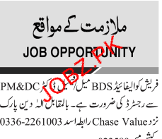 Fresh Qualified BDS and Male / Female Doctors Wanted