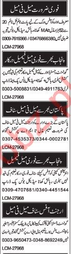 Daily Nawa-e-Waqt Classified Jobs in Multan