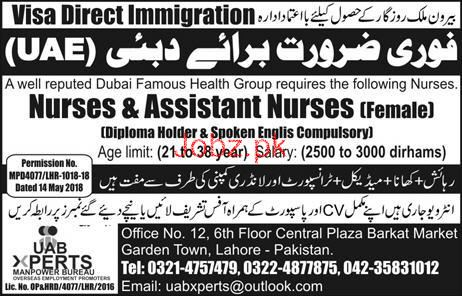 Female Nurses and Assistant Nurses Job Opportunity