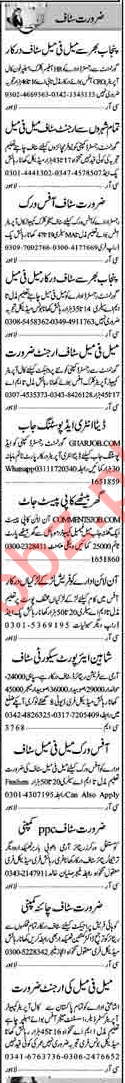 HR/CRO Officer, DEO, Guards, Office Boy, Assistant Jobs