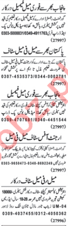 Daily Nawaiwaqt Newspaper Classified Ads 2018