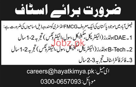 Diploma Holders job in Famous FMCG Company