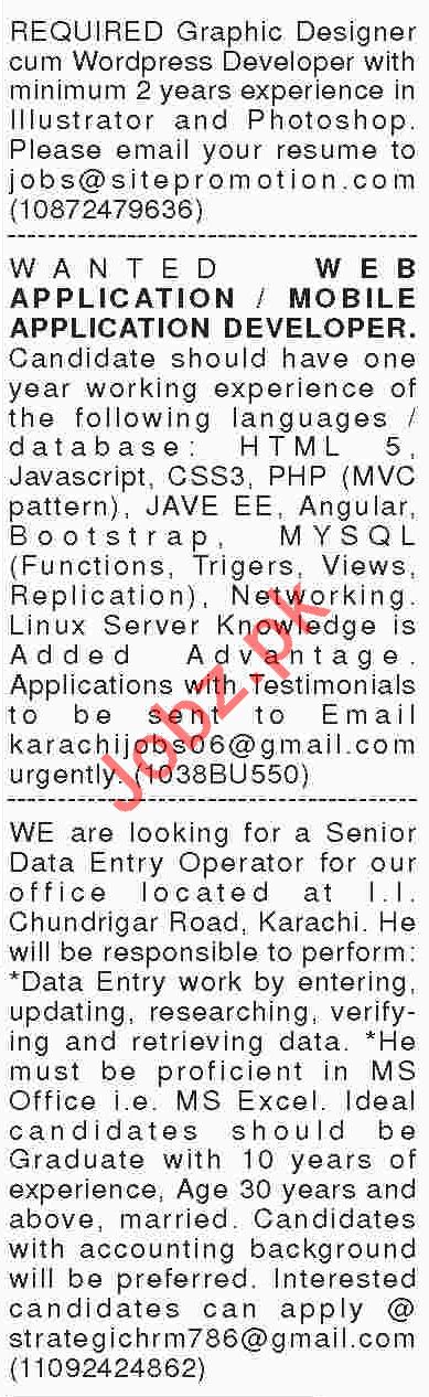 Computer & IT Jobs 2018 in Karachi