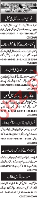 Male & Female Staff Jobs 2018 in Islamabad