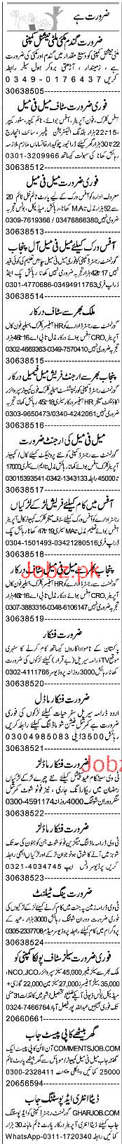 Office Clerks, Telephone Operators, Time Keepers Wanted